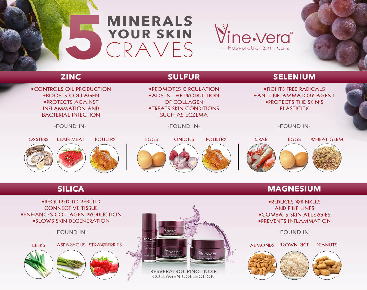 Infographic on the 5 best minerals for the skin