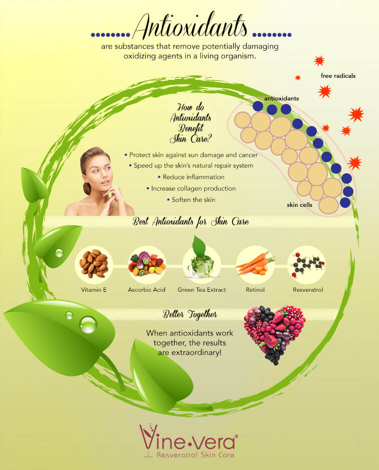 Infographic on antioxidants for the skin