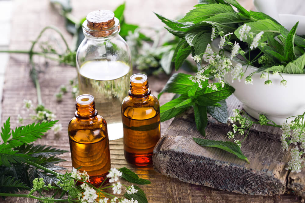 Essential oil bottles surrounded by herbal plants