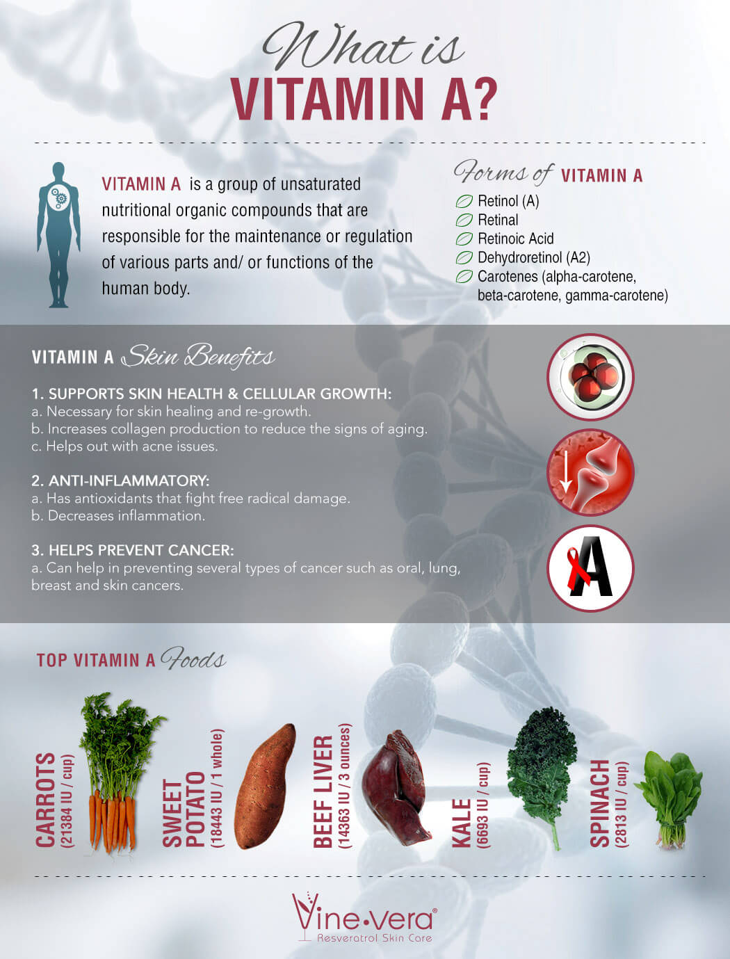 Infographic on vitamin A